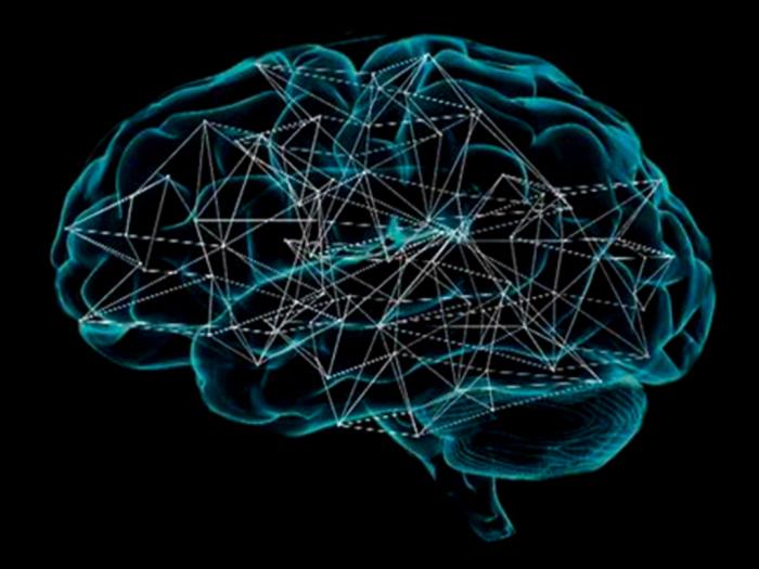 Filosofia e Cognizione, Università diMessina